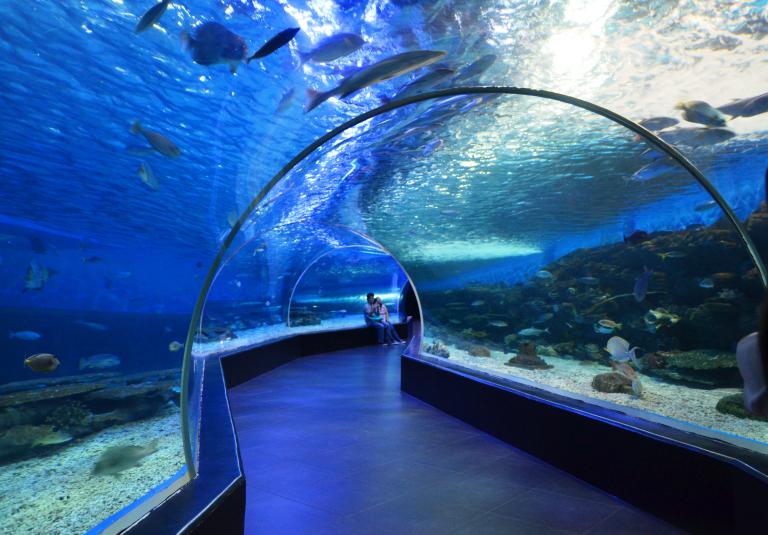 oceanpark2